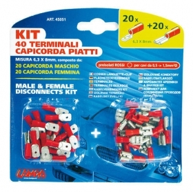 Kit 40 terminali-capicorda pia
